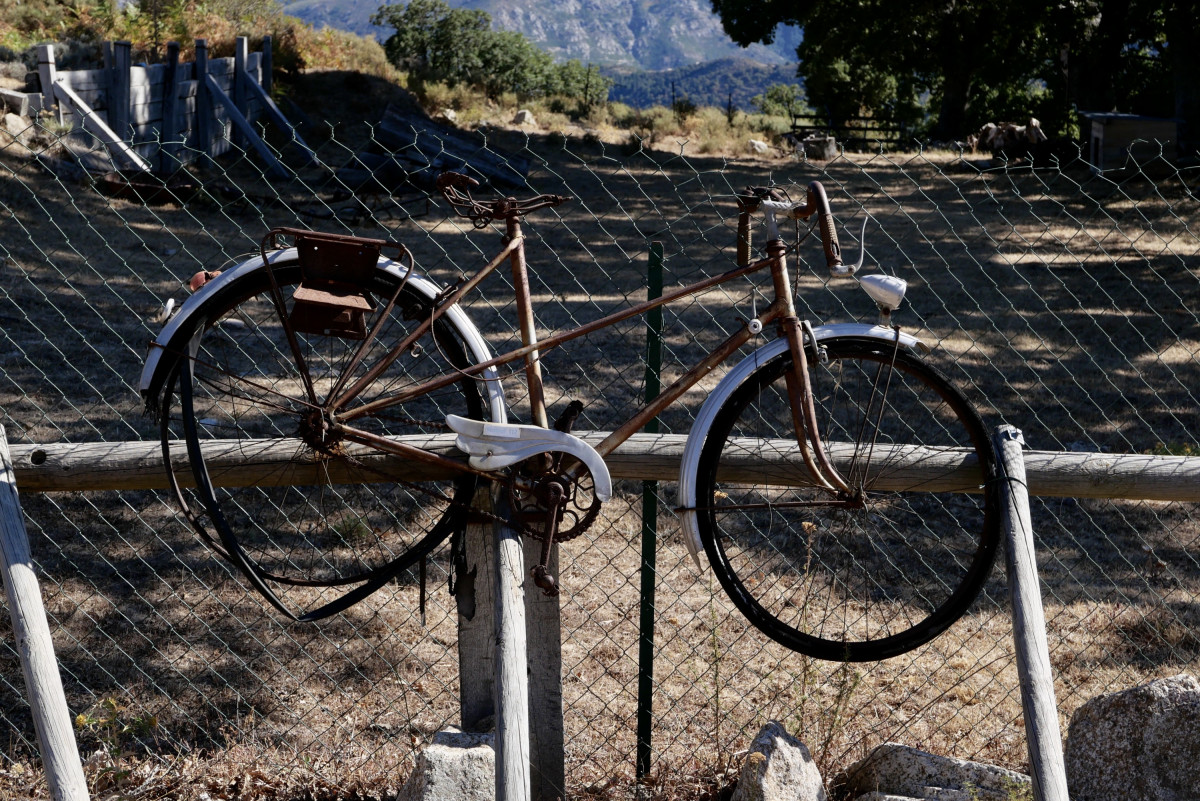Tour de France ist zu Ende - der (Draht)Esel ist im Gatter