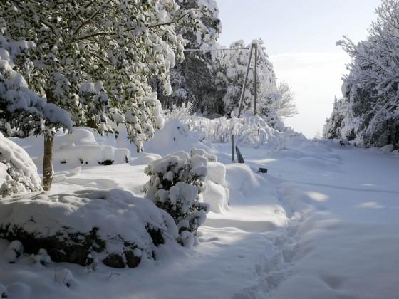 Winter im Fiumorbo 1