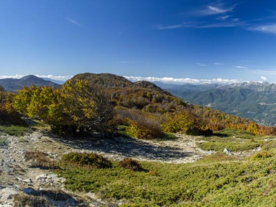 Panorama Plateau du Cuscione