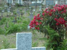 Friedhof Bastelica