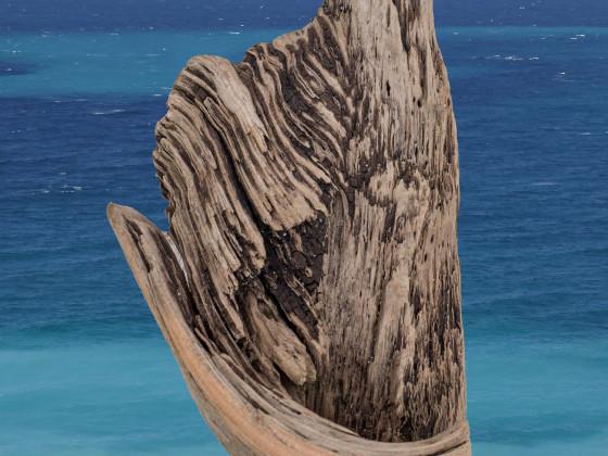 la Corse en bois