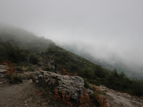 San Bertuli 4 24_8_15