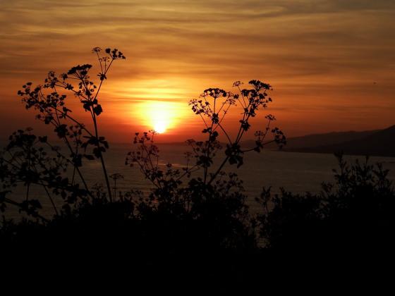 Sonnenuntergang am Golf von Valinco