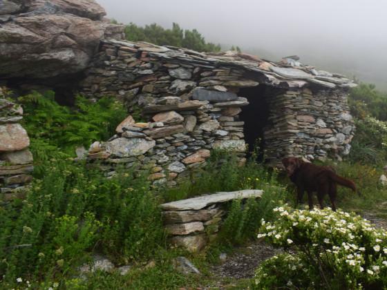 Bergerie am Monte Stello